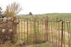 Walk 1.30 Continue through to find the kissing gate