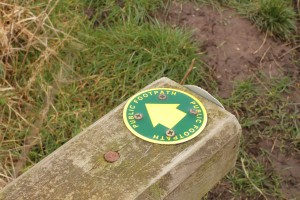 Walk 1.38 Once across the stile turn left to follow the stream a short distance.