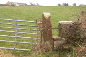 Walk 1.41 The sandstone stile looking back the way you came.